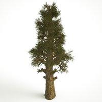3D big old tree
