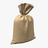 money bag 3D model