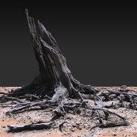 Desert Tree Stump 01 3D Scan