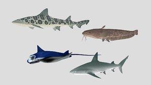 fish 06 3D