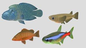 3D fish 07 model
