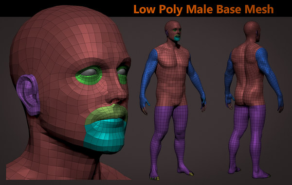 3D male basemesh realistic base model