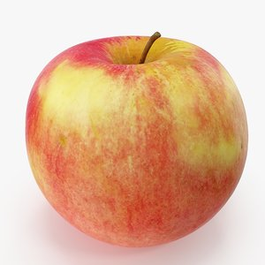 apple 07 model