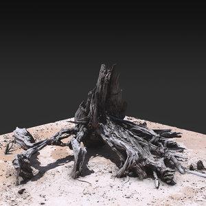 desert tree 03 3D model
