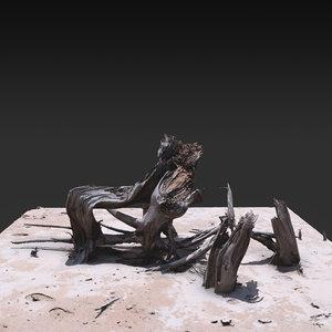 3D desert tree 05 model