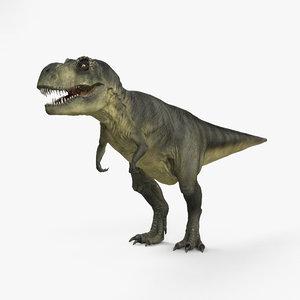 3D tyrannosaurus rex dinosaurs model