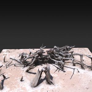 3D model desert tree 06