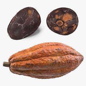 cocoa bean fruit 3D model