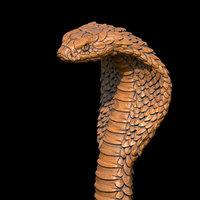 3D cobra head model