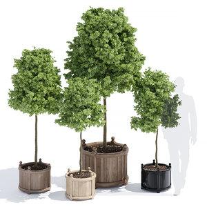 versailles planter 3D model