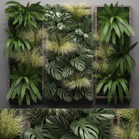 Vertical gardening Fern Wall 10