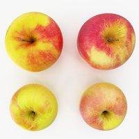 apples 06-09 3D model