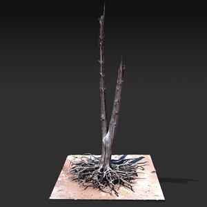 desert tree standing 01 3D model