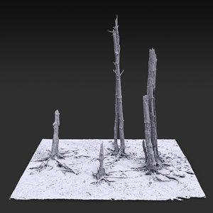desert tree standing 02 model