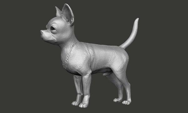 dog chihuahua 3D model