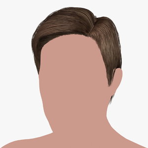 hairstyle 19 hair 3D model