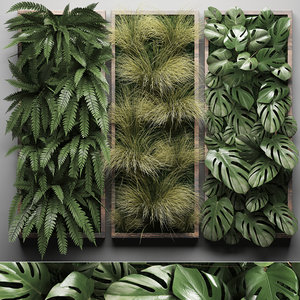 3D vertical gardening wall fern