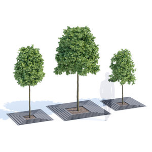 3D arboris tree-grill metalco model