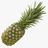 Realistic Whole Pineapple