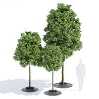3D calyx tree-grilles metalco model