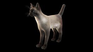 3D model siamese cat fur