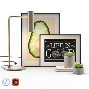 3D decorative set framed succulent