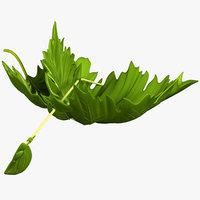 leaf boat 3D
