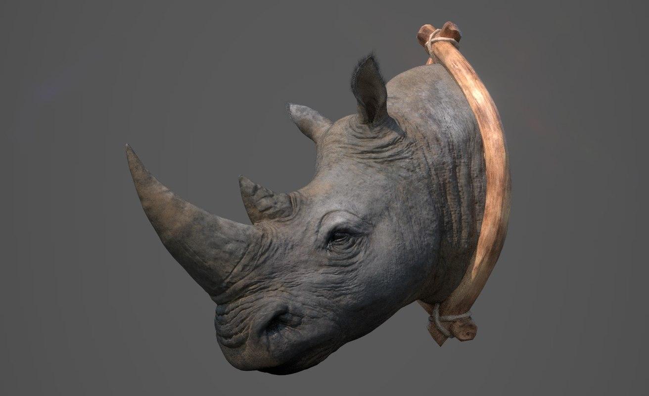 3D rhinoceros head