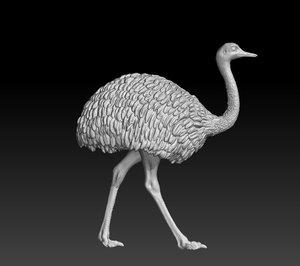 3D rhea choique