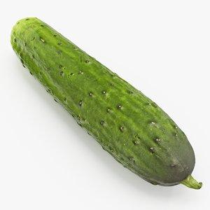 3D model cucumber 01