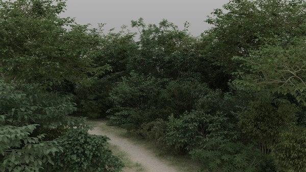 3D shrubs 60