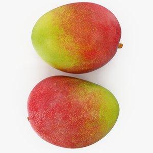 mango 01-02 model