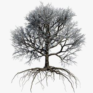 3D oak winter 1 tree
