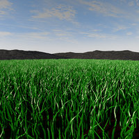 concepts meadow landscape 3D