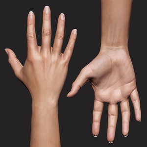 realistic female arm hand 3D model