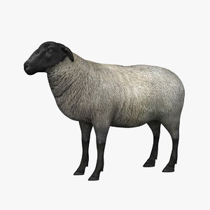 sheep 3d 3ds