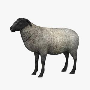 sheep 3d 3ds