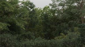 100 trees max