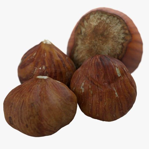 hazelnuts shell 3D model
