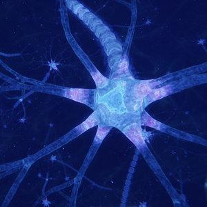 3D neuron transmission