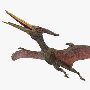 pteranodon pterosaur dinosaurs 3D model