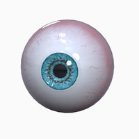 realistic human eye ball 3D model
