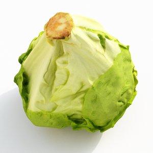 iceberg lettuce model