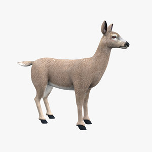 3D model deer doe animal