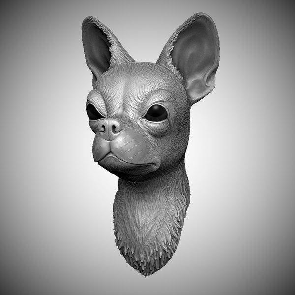 3D chihuahua head