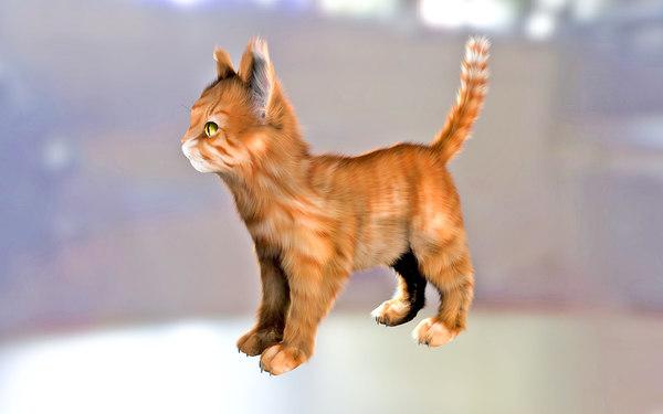 cat fur 3D