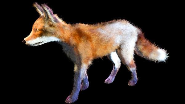 fox fur animal 3D model