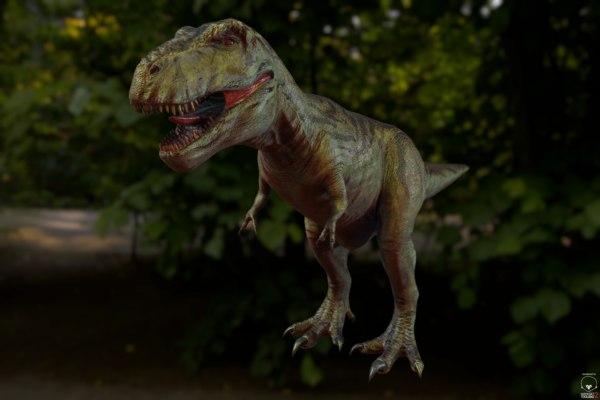 dinosaur rex 3D