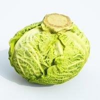 3D savoy cabbage