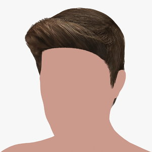 hairstyle 20 hair 3D model
